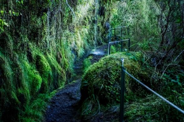 Levadawandern auf Madeira