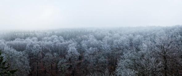 Vogelsberg_053