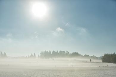 Morgenstimmung am Radsberg